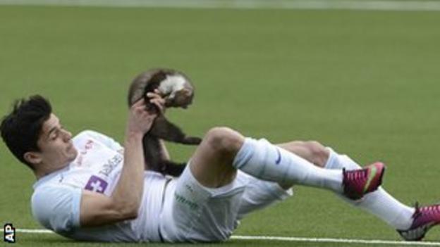 Zurich defender Loris Benito tackles a trespassing marten