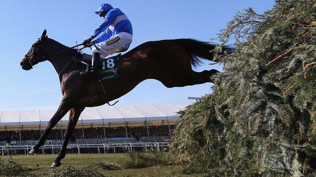 Cappa Bleu in action in the 2013 Grand National