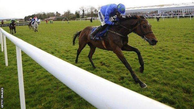 Hurricane Fly wins at Punchestown in April