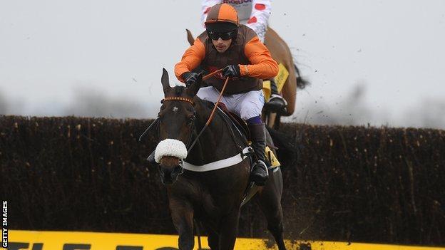 2011 Cheltenham Gold Cup winner Long Run among Grand National entries