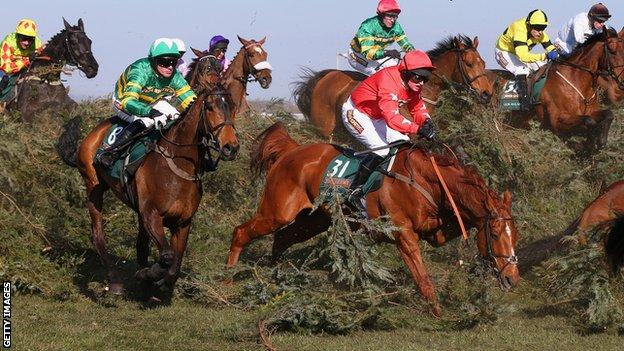 Action from the 2013 Grand National