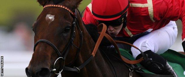 Racehorse Charlie Wells