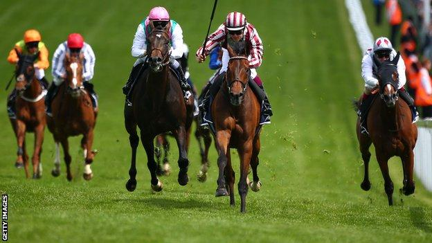 Cirrus Des Aigles winning the Coronation Cup at Epsom in June
