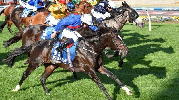 Adelaide gets up by a head to win the Cox Plate
