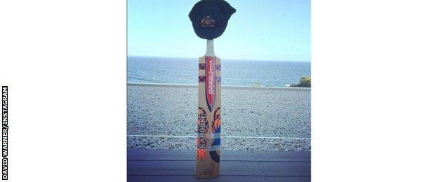 David Warner's bat