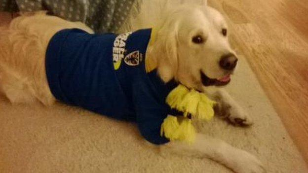 Willoughby the Wimbledon supporting dog