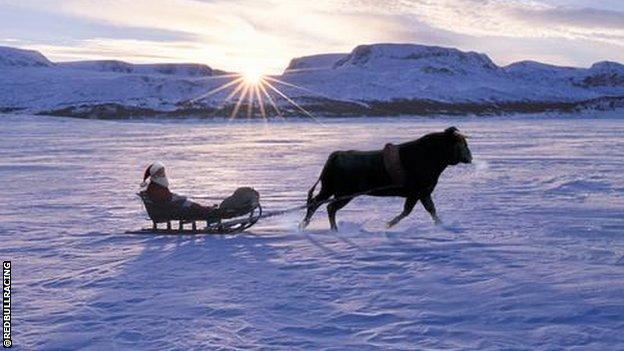 Red Bull santas sleigh