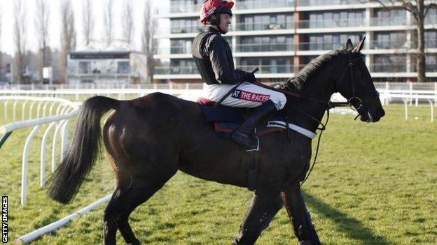 Sprinter Sacre at Newbury