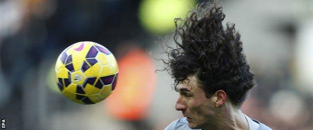 Newcastle United defender Fabricio Coloccini
