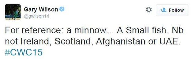Gary Wilson tweet over World Cup minnows