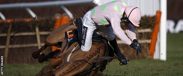 Ruby Walsh and mount Annie Power take a tumble