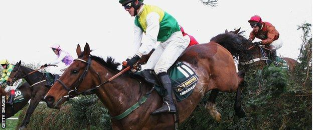 Hedgehunter, winner of the 2005 Grand National