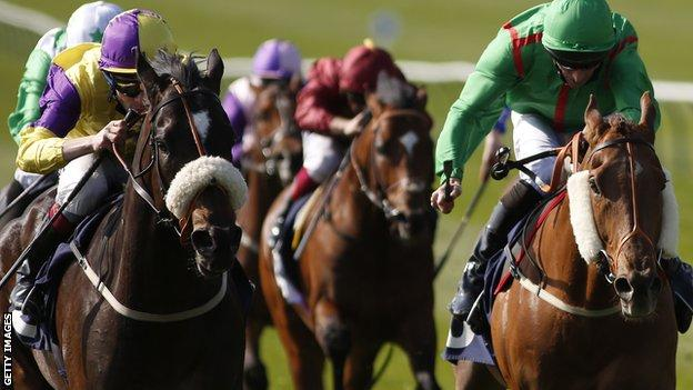 Horses in action at Newmarket