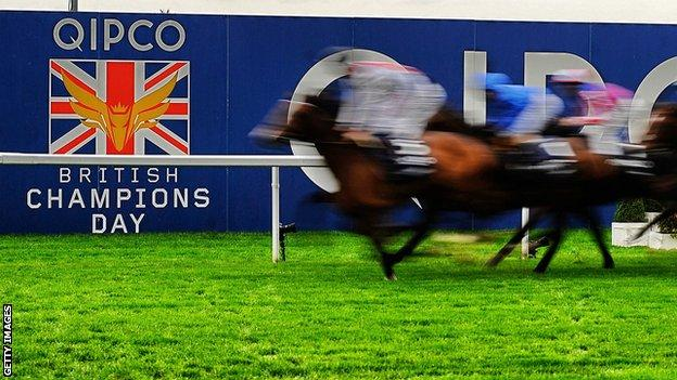 Runners in The Qipco British Champion Long Distance Cup at Ascot in 2014