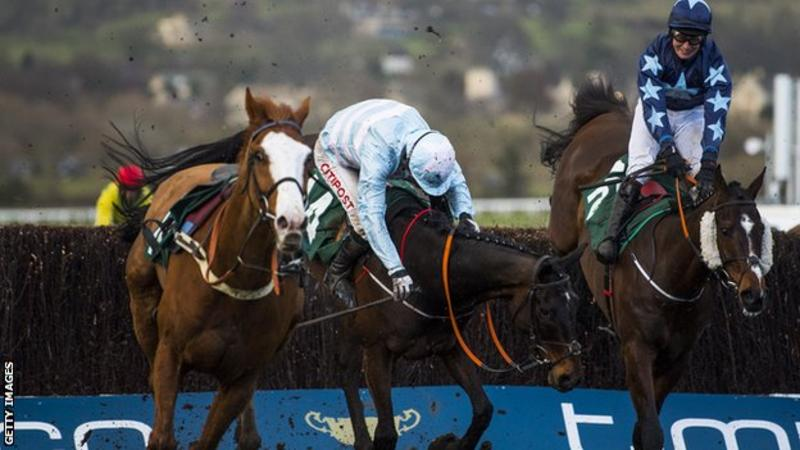 Cheltenham Festival BHA to carry out review after six horse deaths