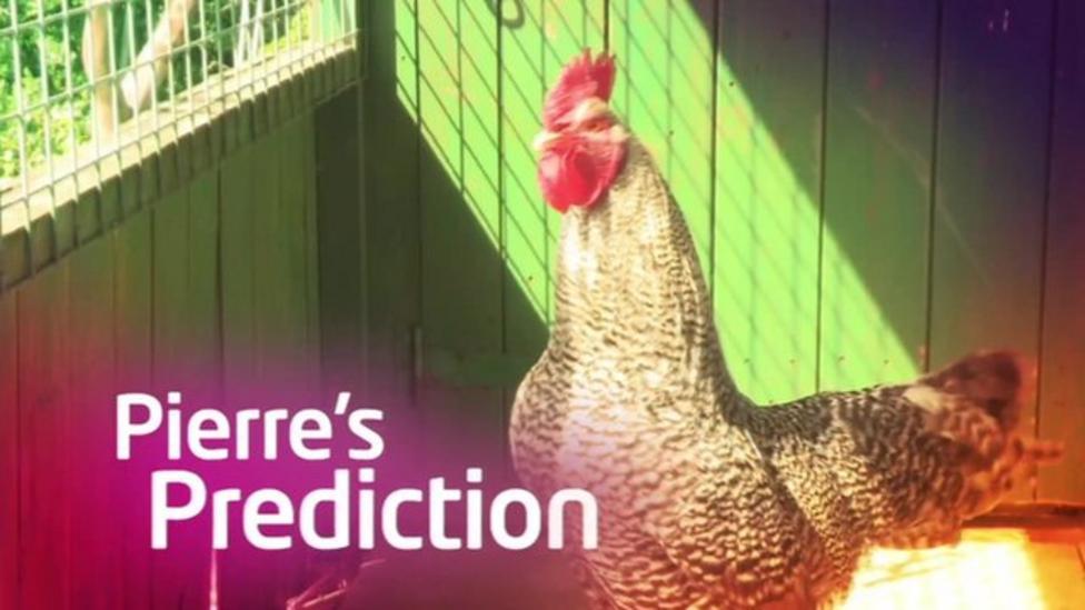 Pierre the Euros predicting cockerel - week two