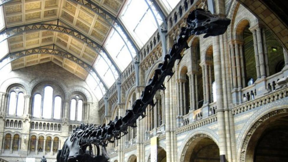 Dippy the diplodocus set for UK tour