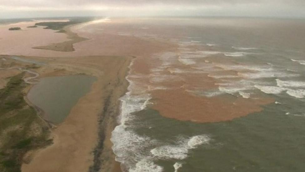 Toxic mud destroys forests in Brazil