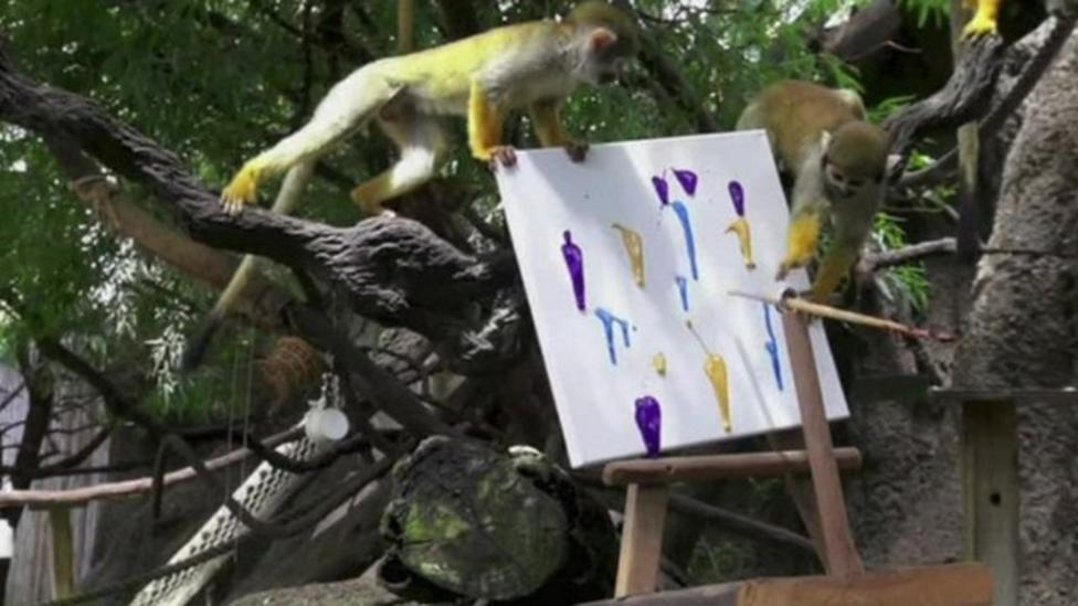Arty animals help raise charity funds