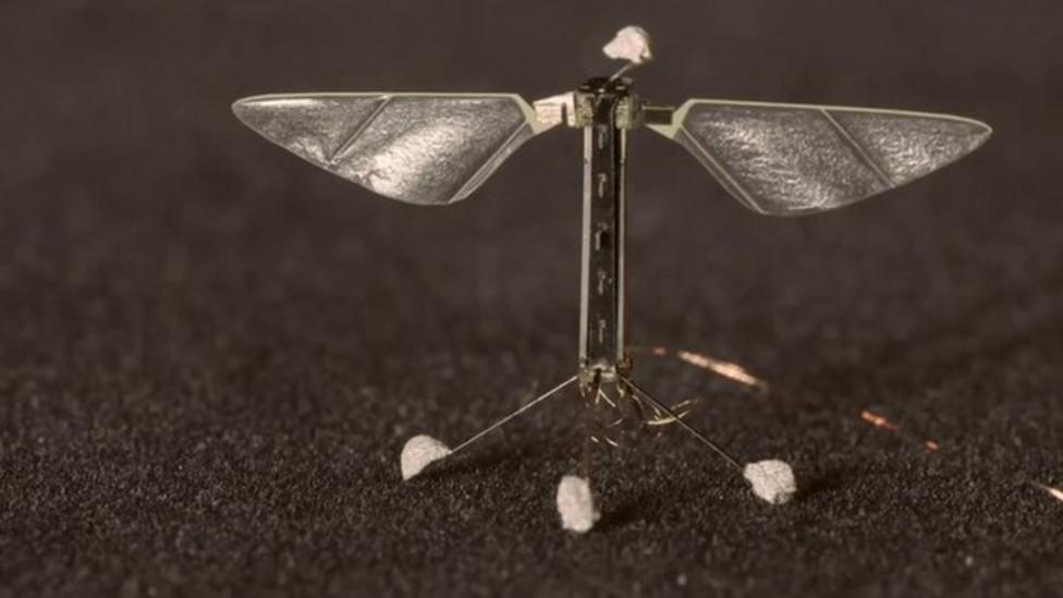 Robot bee designed to fly and swim