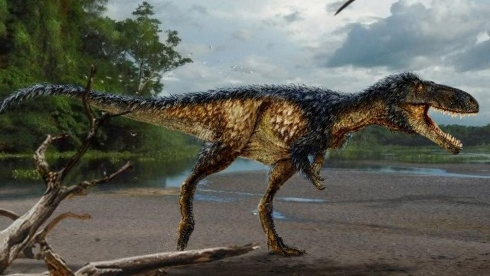 New species of Tyrannosaur discovered