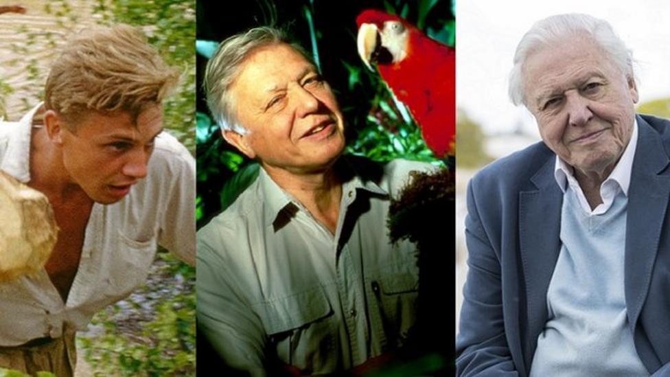 David Attenborough at 90
