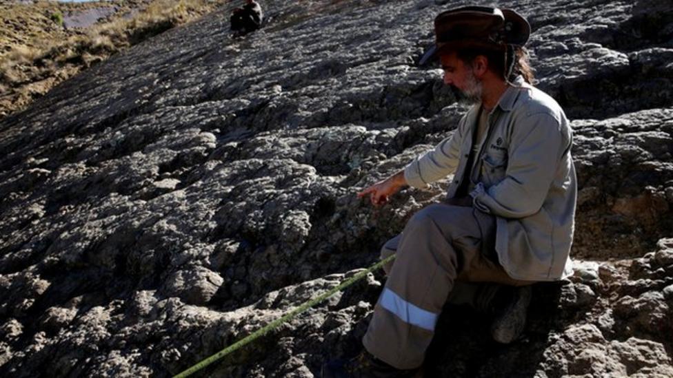 1.2m wide dinosaur footprint discovered