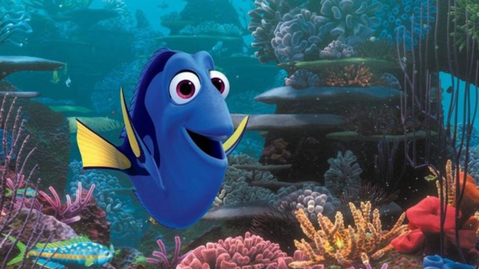 Finding Dory 'could cause fish decline'
