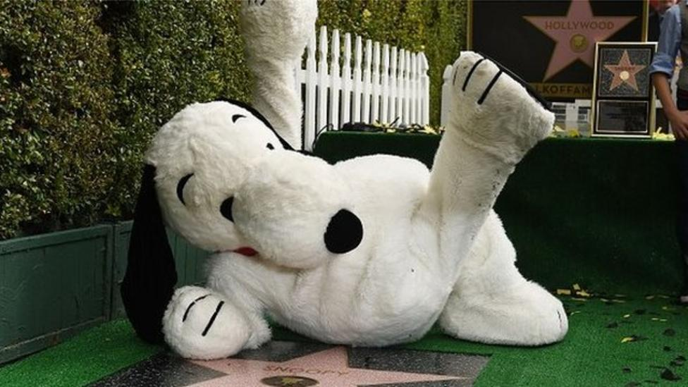 Snoopy's star on the walk of fame