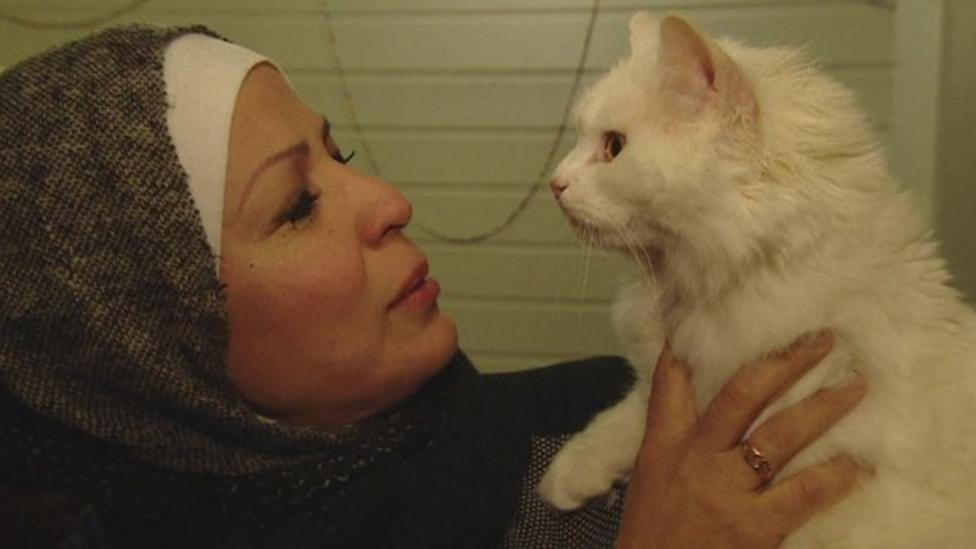 Refugee family reunited with missing cat