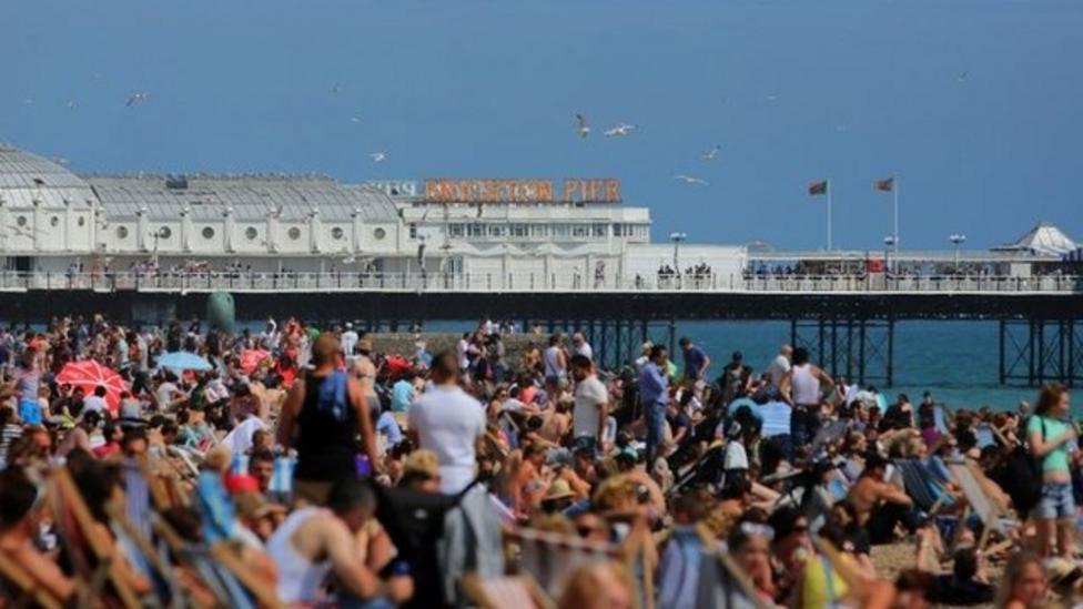 City looks into beach smoking ban