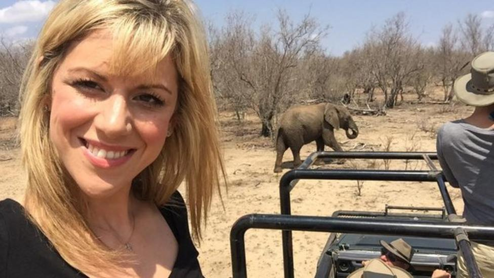 Saving Africa's elephants: What's being done?