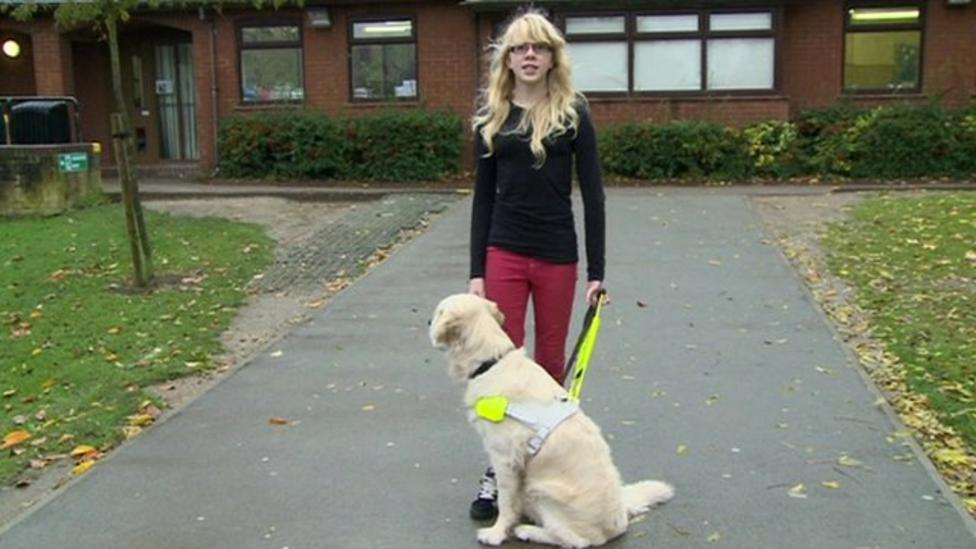 Check out Hannah's report about her guide dog
