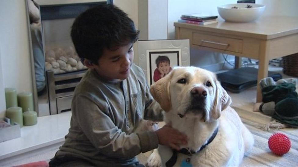 Hearing dogs for deaf children