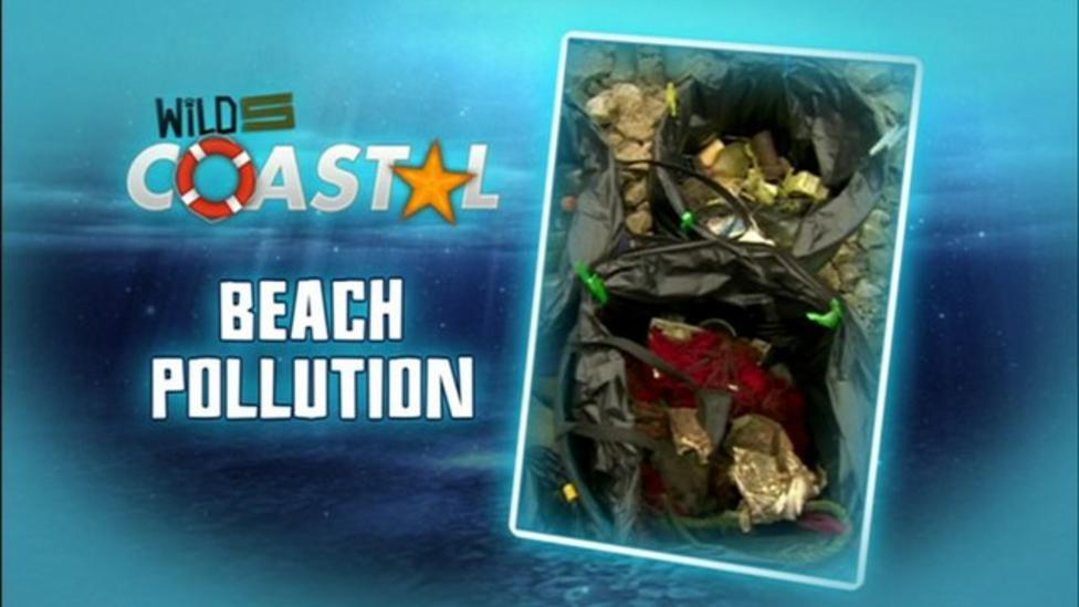 Wild Five Coastal - beach pollution