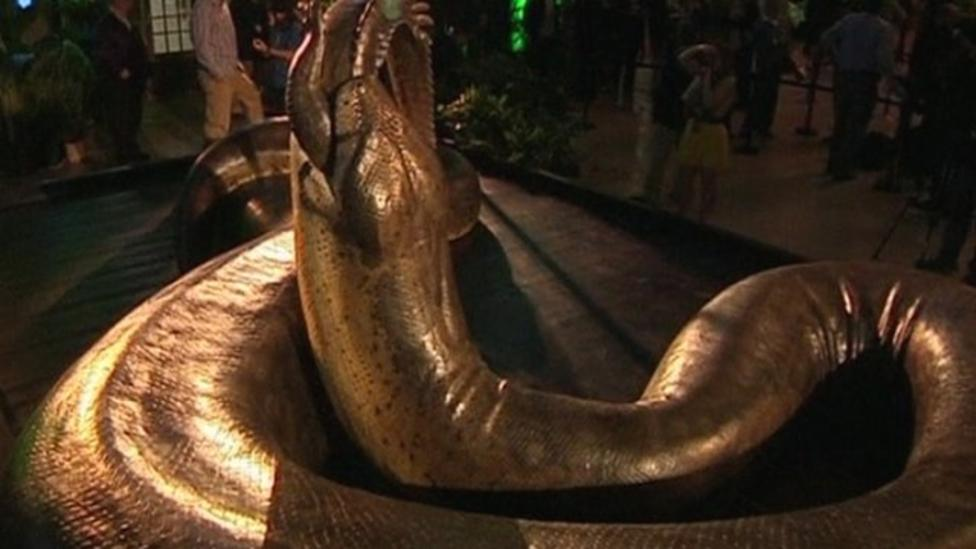 Largest snake in the world unveiled