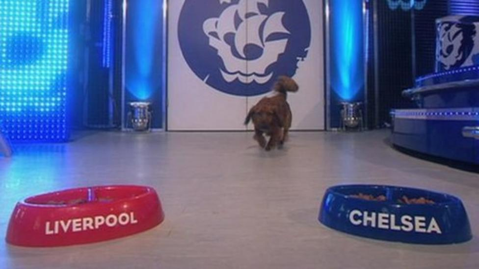 Barney the Blue Peter dog predicts who will win the FA Cup