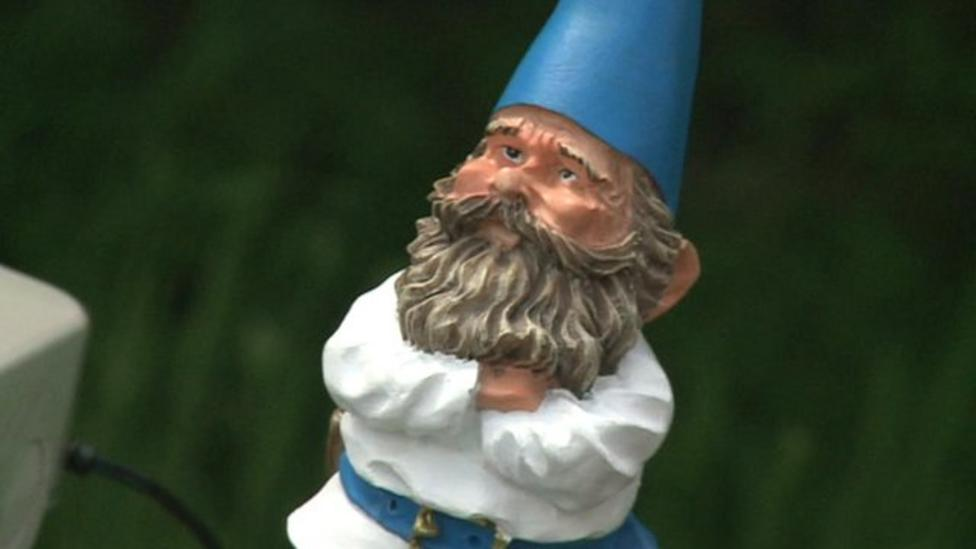 Gnome in global weight experiment