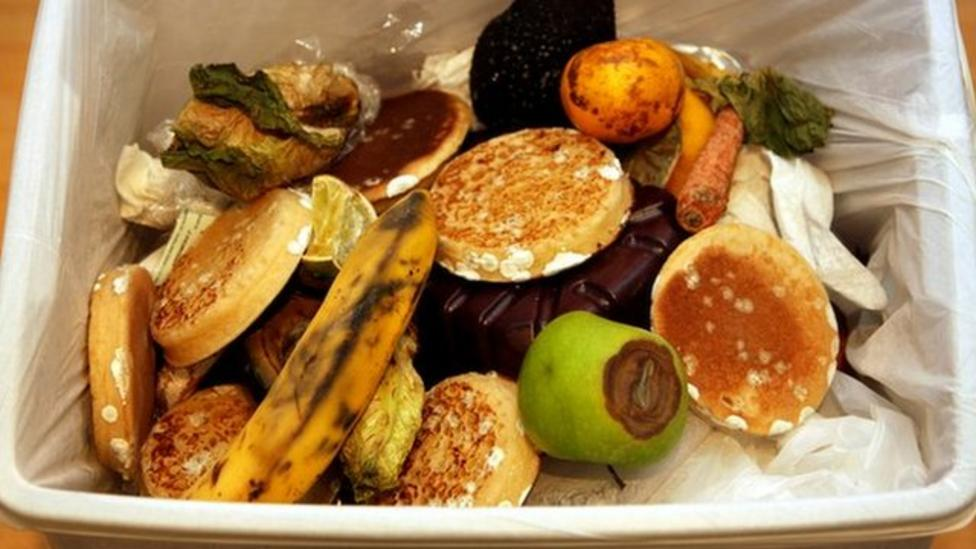 Comments: Do we waste too much food?