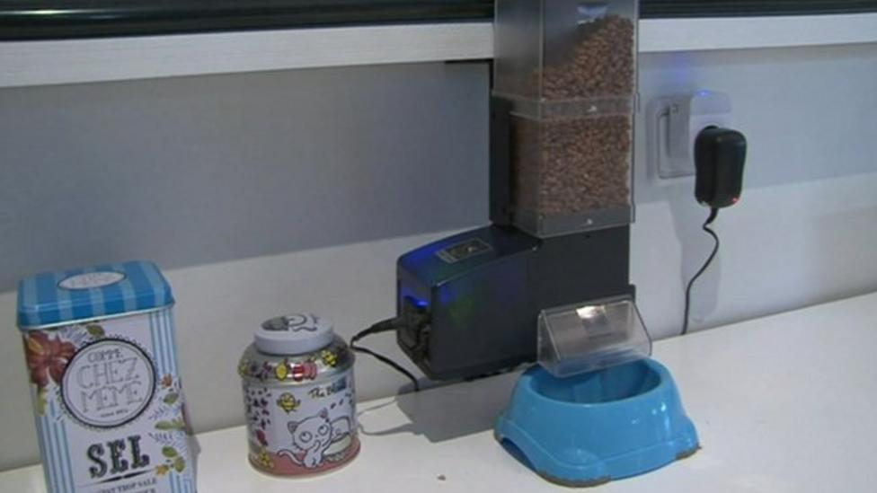 The cat feeder controlled by phone