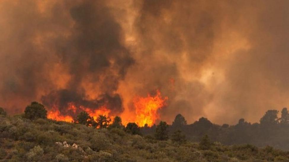Firefighters die in Arizona wildfire