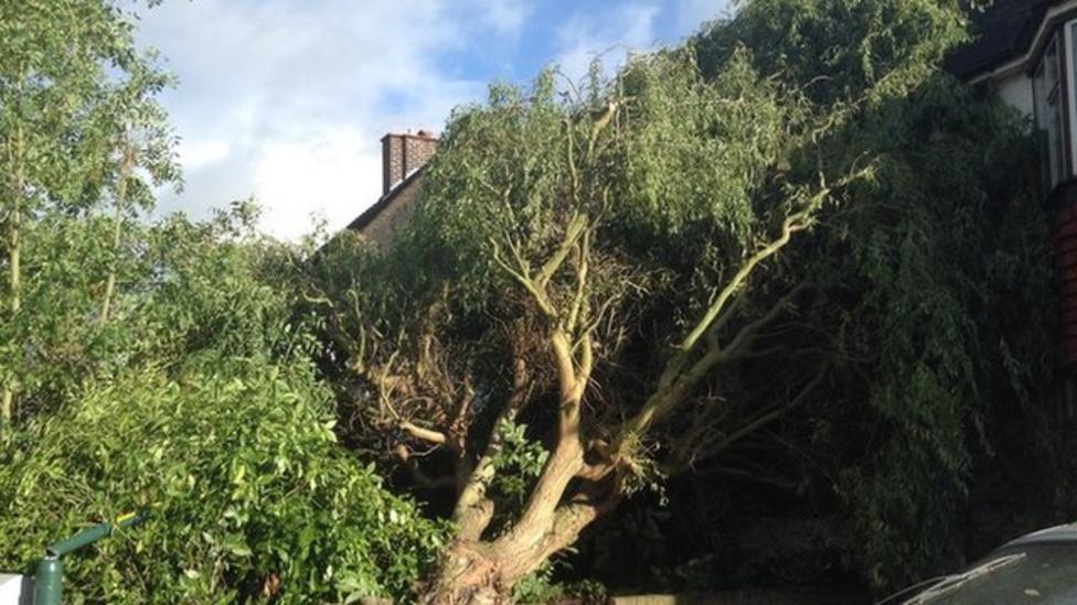 Newsround viewers' storm stories