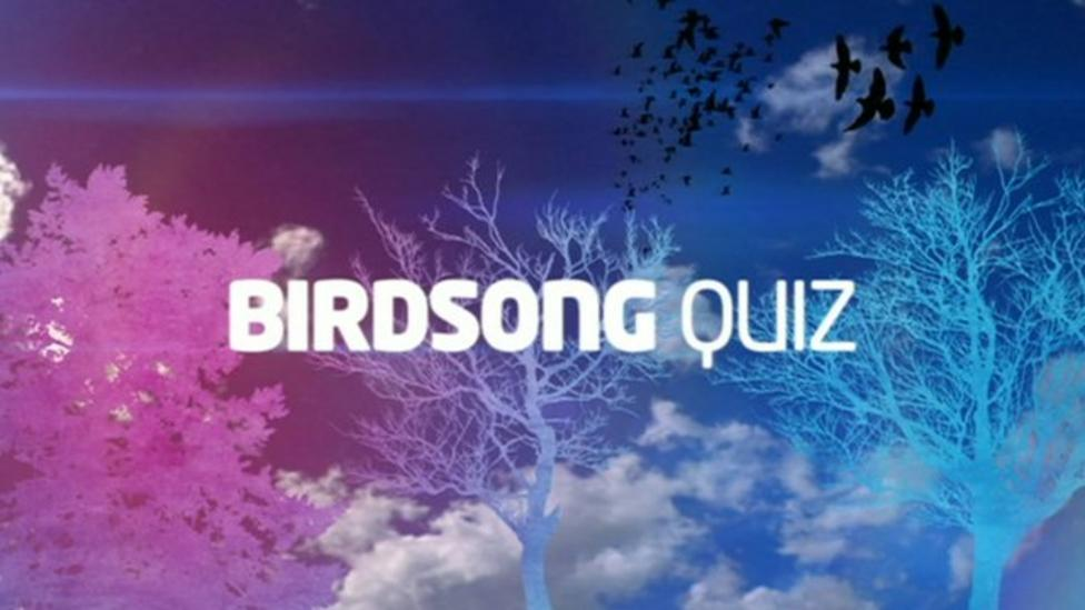 Can you tell a bird from its song?