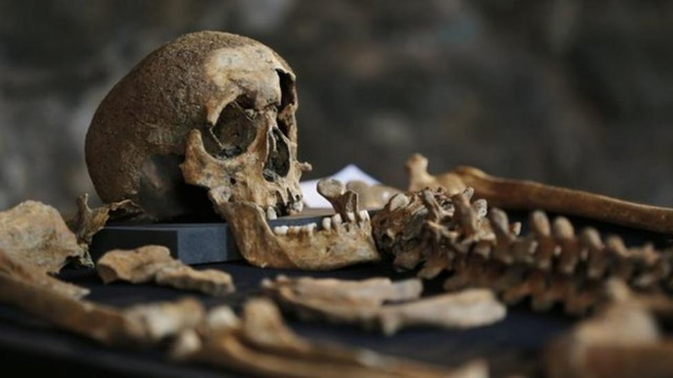 Black Death mystery finally solved