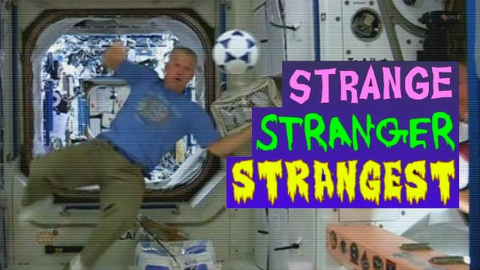The strangest World Cup news