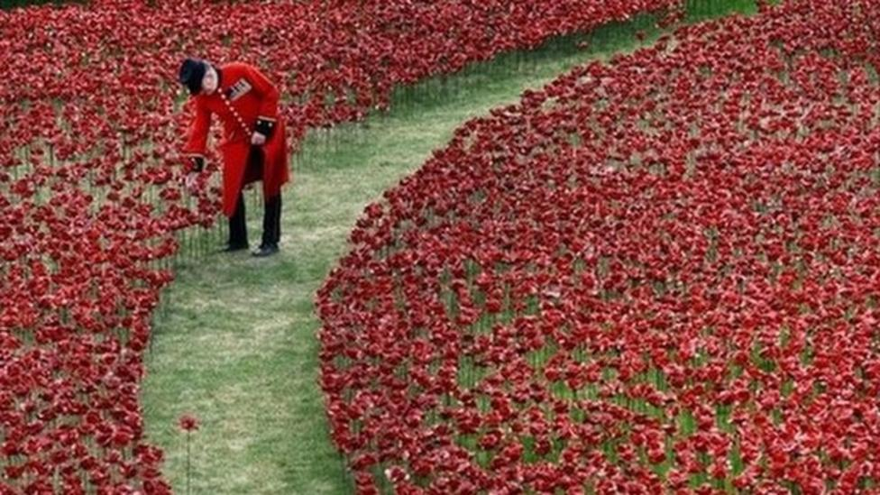 Royals 'plant' special poppies