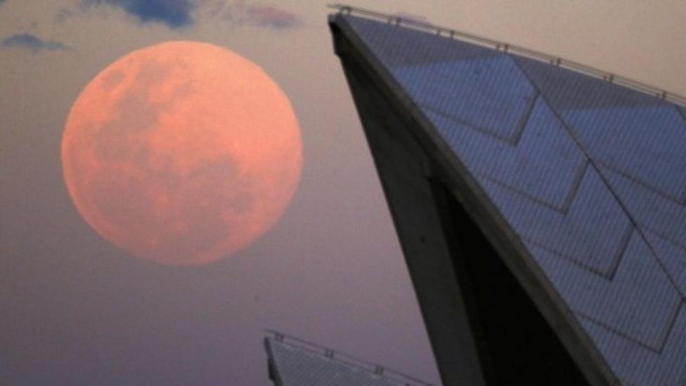 Did you see a supermoon?