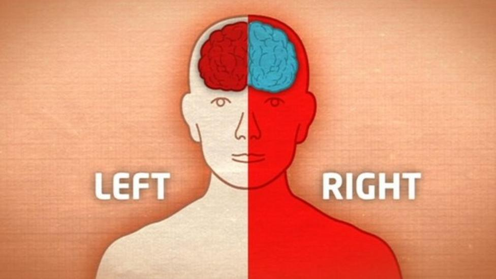 Why are we left handed?