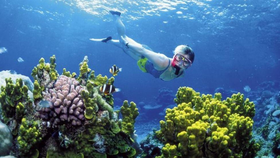 Battle over the Great Barrier Reef