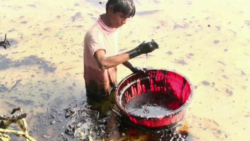 Bangladesh oil spill threatens wildlife